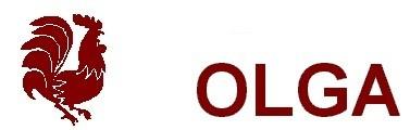 Pollos Olga - Asador de pollos, comidas a domicilio, pizzas, hamburguesas, carnes, postres caseros, paellas, aperitivos, Albacete